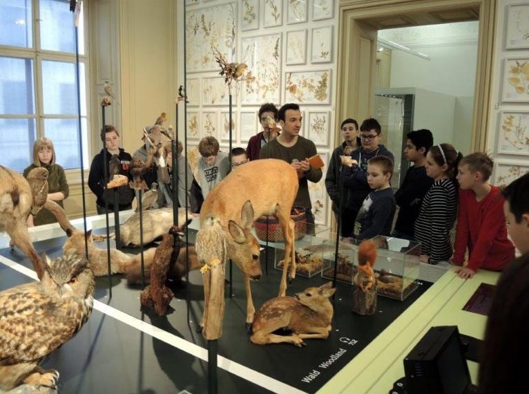 "Kooperation: Aktionstag ""Schule schaut Museum"" Universalmuseum Joanneum am 7. März 2018"