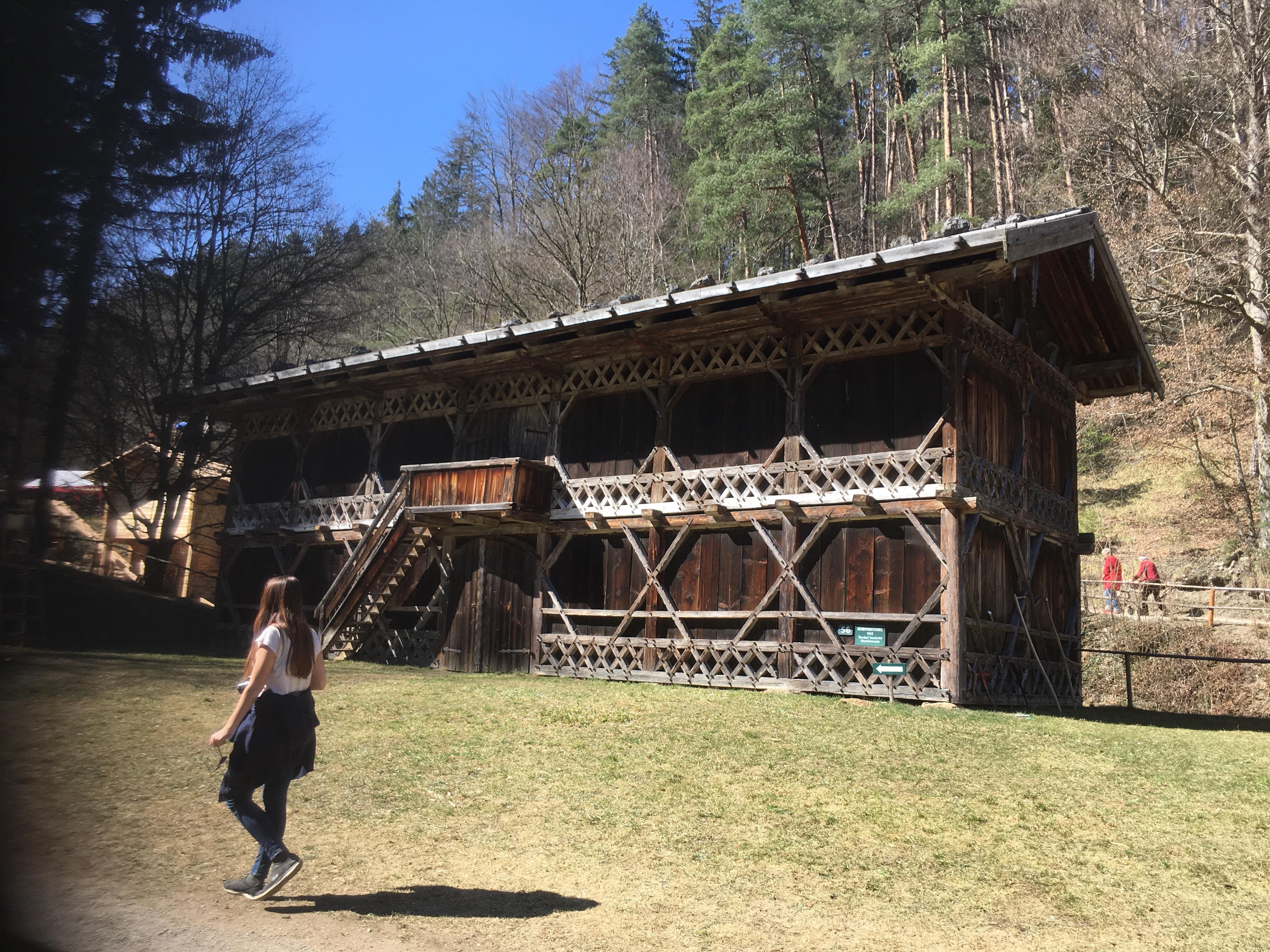 """Rückblick auf unseren gemeinsamen Ausflug zum """"World Wood Day 2019"""""""